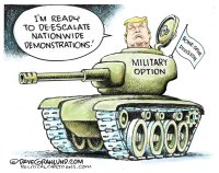 Military option for demonstrations