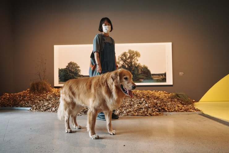 A visitor and her dog look around 'A Museum for All, A Museum for Dogs' exhibition at the National Museum of Modern and Contemporary Art, Seoul. Courtesy of MMCA