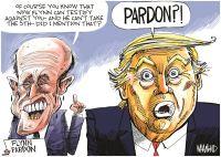 Flynn pardon
