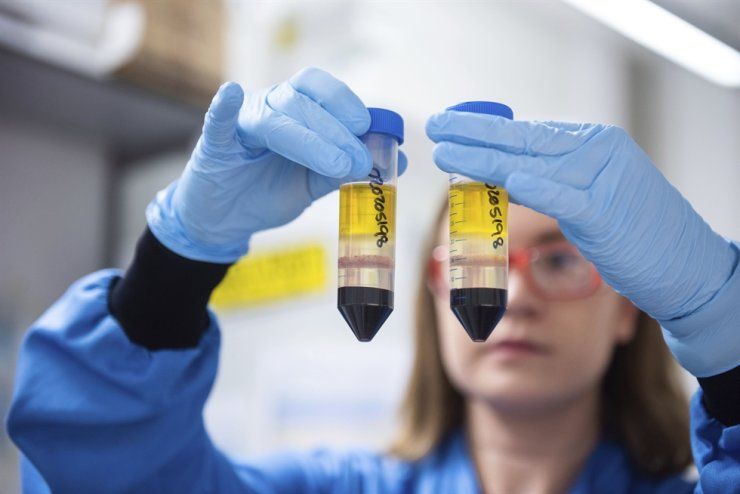 A researcher in a laboratory at the Jenner Institute in Oxford, England, works on the coronavirus vaccine developed by AstraZeneca and Oxford University in this undated file photo issued by the university, Nov. 23. AP