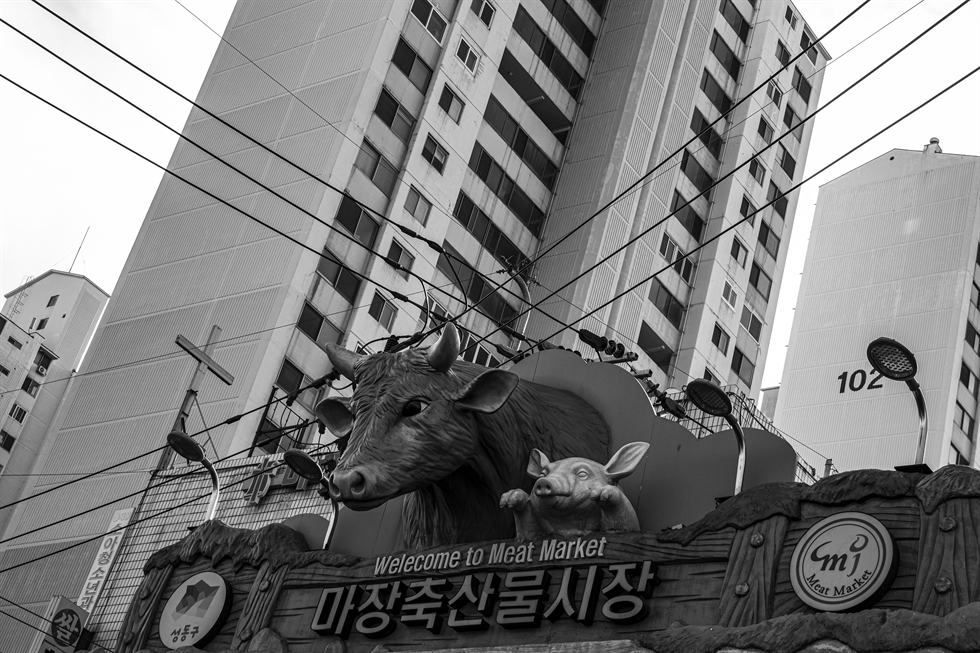 The statue of a bull near the entrance to the Majang Meat Market in Majang-dong, Seoul, is seen Tuesday. Korea Times photo by Shim Hyun-chul