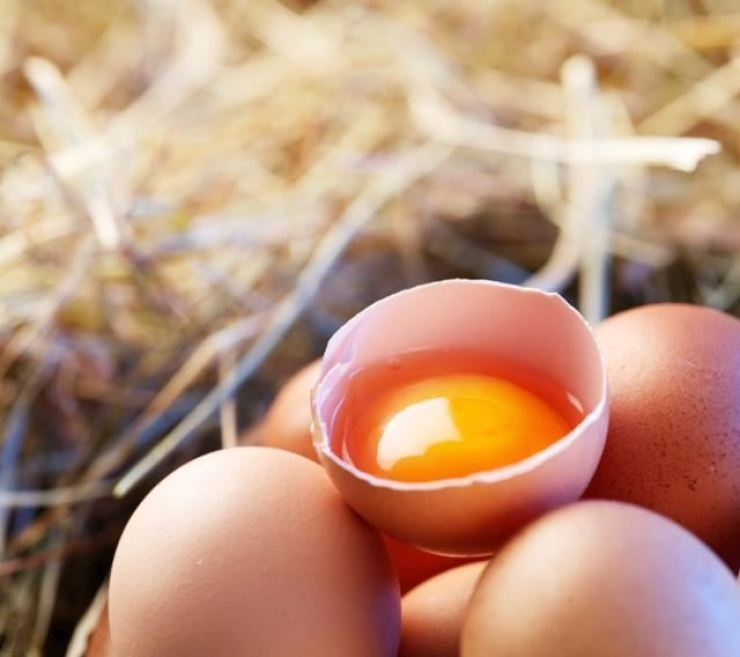 Prices of eggs in South Korea have jumped 27 percent so far this year, data showed Thursday, amid a supply shortage caused by the outbreak of bird flu here. gettyimagesbank