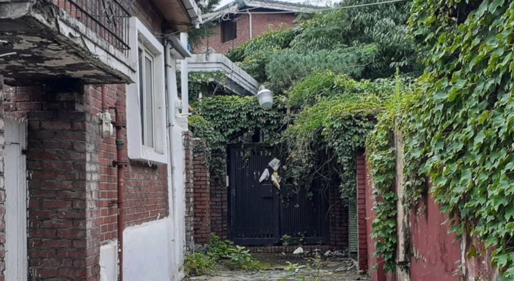 An alley is overgrown with vegetation in a redevelopment zone in Jangwi-dong, northeastern Seoul. / Courtesy of Lee Joo-young