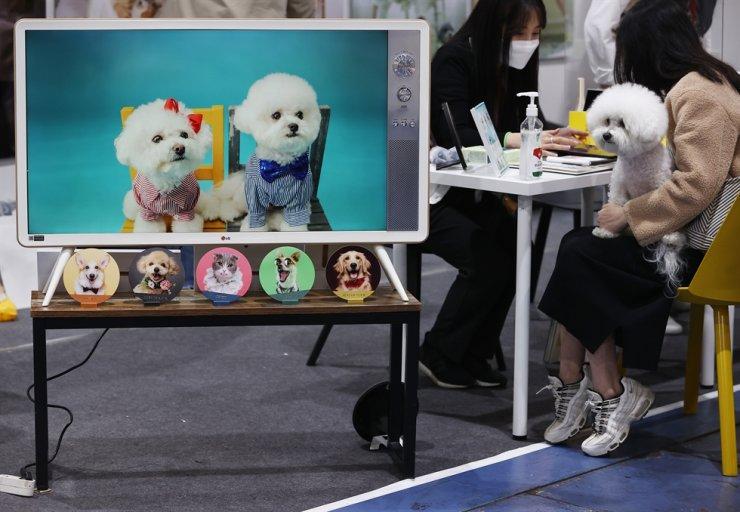 Pet owners attend a pet fair at SETEC in Gangnam District, Seoul, Friday. Yonhap