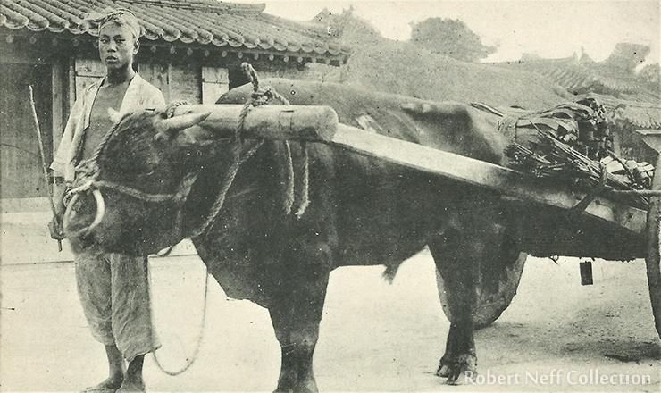 Boats in Fusan's harbor in December 1918.  Robert Neff Collection