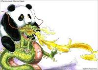 China dragon in Panda clothing