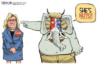 Liz Cheney is nuts