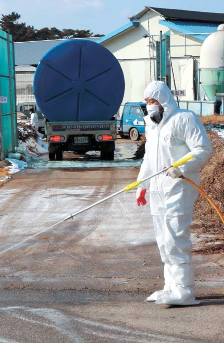 A government official spreads disinfectant over a road leading to a poultry farm hit by avian influenza (AI) in Buan County, North Jeolla Province, Wednesday. / Yonhap