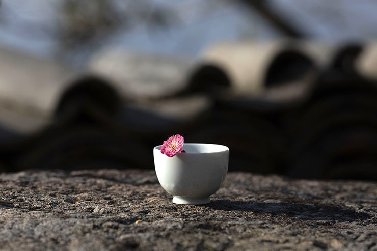 A bloomed flower lies in an empty tea cup on the rock at Geumdun Temple in South Jeolla Province, Jan. 22. Korea Times photo by Choi Won-suk