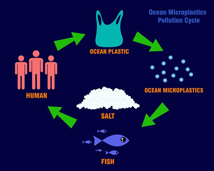Ocean microplastics pollution cycle. GettyimagesBank