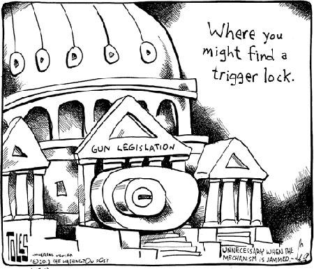 gun legislation essay