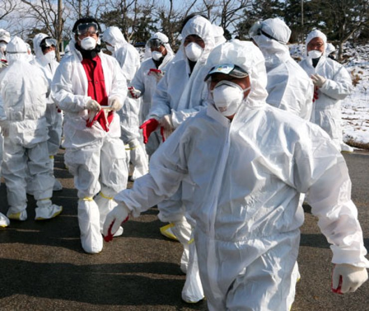 Civil servants and volunteer workers in disinfection suits walk into a poultry farm in Buan County in North Jeolla Province, Wednesday. The government has ordered to culling of ducks and duckling at poultry farms within a 3-kilometer radius of avian influenza-infected farms. / Yonhap