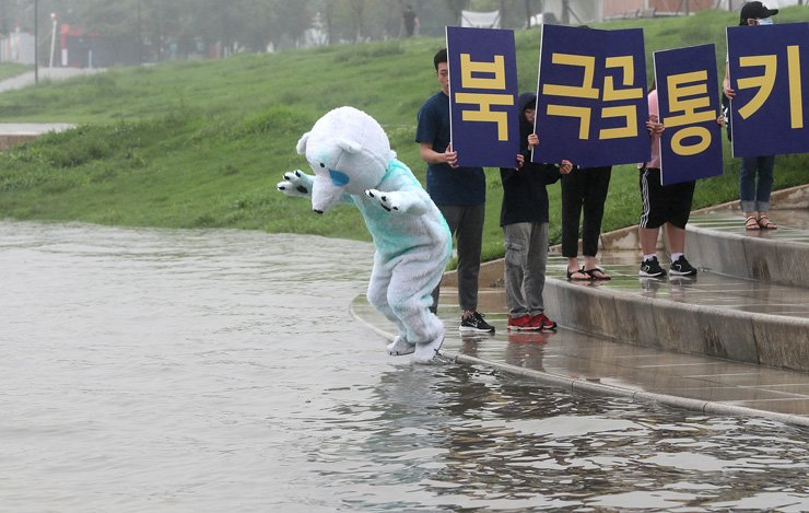 An animal rights activist in a polar bear costume jumps into the Han River at Yeouido Hangang Park in Seoul, Friday, in protest of Everland's alleged mistreatment of a polar bear./Yonhap