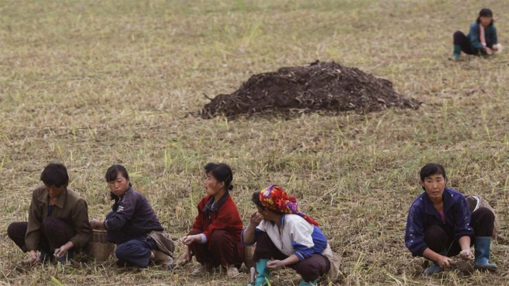 Farm workers in North Korea, which has been beset by years of food shortage.