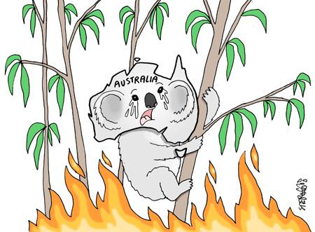 Bush fire in Australia