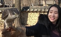 ON THE SPOT - Falconry experience at Korean Folk Village