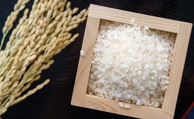 Koreans' consumption of rice hits all-time low in 2020