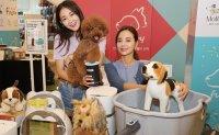 E-mart considers unloading pet shop business