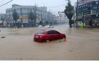 Typhoon wreaks havoc on eastern region [PHOTOS]