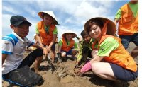 SK, PVEP restore mangrove forests in Vietnam