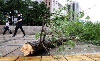 Typhoon Maysak rips through Korea, killing one