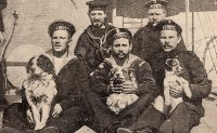 In the navy: Cats, dogs and goats go down to the sea in ships