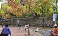 Where to enjoy peak fall foliage in Seoul