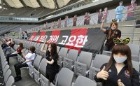 FC Seoul fined for putting sex dolls in stands