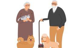 Baby boomers back in spotlight