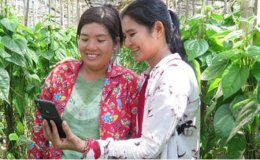 UN Asia-Pacific fund to support female entrepreneurs in Southeast Asia