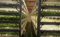 Korea to invest 248 billion won in smart farming in 2020