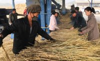 UN projects North Korea's food situation to worsen this year