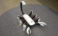 진짜 전갈처럼 행동하는 '전갈 로봇' 개발돼