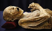 10-year-old German boy finds ancient Egyptian mummy in grandma's attic