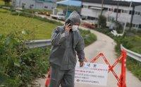 Korea reports second confirmed African swine fever case