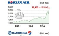 Asiana Airlines stock hit daily limit over possible takeover by Korean Air