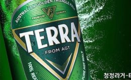 HiteJinro banned from using 'Clean Lager' to promote TERRA