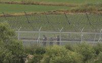 North Korean man captured after crossing inter-Korean border