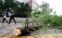 Typhoon Maysak rips through Korea, killing one