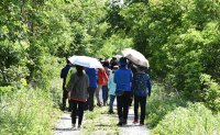 South Korean border now UNESCO biosphere reserves