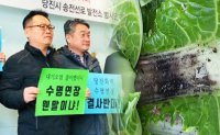 David vs. Goliath: South Chungcheong's battle against coal