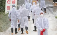 Two additional African swine fever cases confirmed in Paju