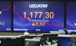Korean stocks plunge on coronavirus fears