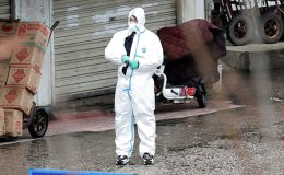 WHO, China could have acted faster on pandemic: experts