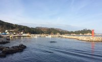 Traditional fishing village welcomes foreign visitors