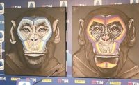Serie A derided for monkeys painting in anti-racism campaign