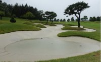 LPGA team play to resume Sunday after cancellation due to Typhoon Kong-rey