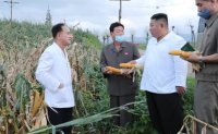 Russia provides 25,000 tons of wheat to typhoon-hit North Korea