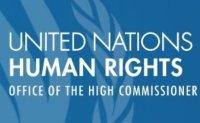 Samsung, LG perplexed by UN allegation of Uyghur rights violation