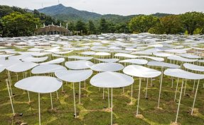 Architect duo transforms museum into playground